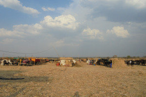 Educational support for drought-affected villages in Marathwada