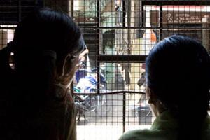 Help rehabilitation of rescued human trafficking victims